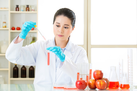 genetic food modification: scientist use dropper to test  genetic modification food in laboratory