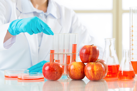 genetic food modification: we have no idea is genetic modification food meaning the future