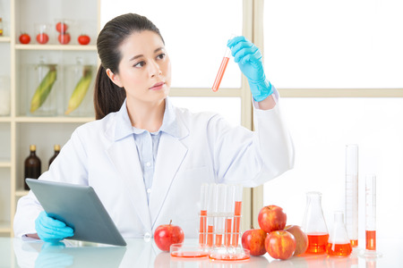 looking at lab tube and find the answer for genetic modification food development Stock Photo