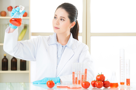 genetic food modification: human try to make better genetic modification food in laboratory