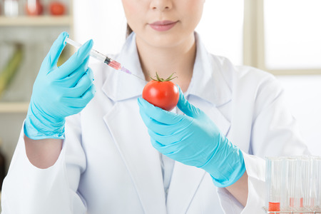 genetic food modification: genetic modification food research will find the clue in laboratory Stock Photo