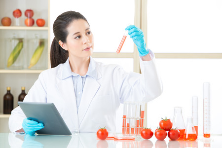 genetic food modification: looking at lab tube and find the answer for genetic modification food development Stock Photo