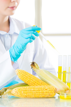 sugar is not about sugar, gmo food sugar from corn research Stock Photo