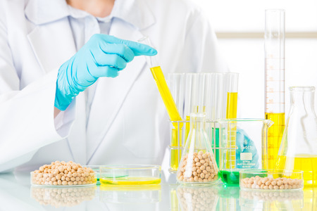 genetic food modification: Biotechnology lab to develop genetic modification food for future Stock Photo