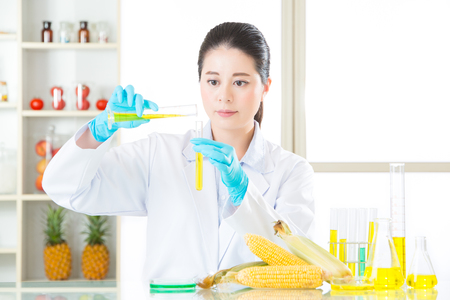 genetic food modification: genetic modification food are all develop from professional laboratory Stock Photo