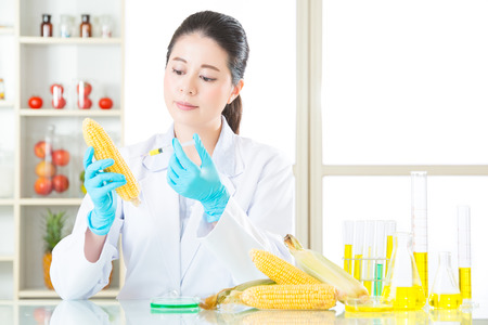 genetic food modification: genetic modification food are everywhere around the world now