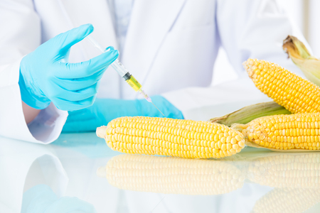 no idea: we have no idea is genetic modification food meaning the future