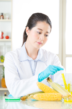 genetic food modification: you will love genetic modification food after you know the test result