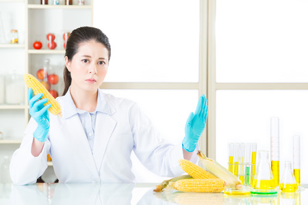 genetic food modification: say no to genetic modification gmo food, it is not healthy after test Stock Photo