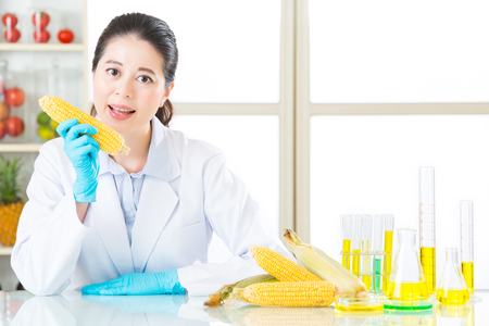 corn is not just a corn, it help for industry for sure Stock Photo
