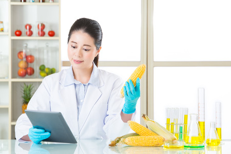 genetically modified crops: digital tablet is very important tool for gmo food research in lab