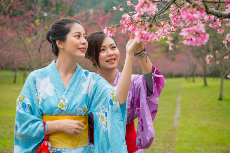 Two beauty asian woman wearing traditional japanese kimono looking pink trumpet trees flower during vacation , sakura background in tokyo, japan. Japanese girls enjoy cherry blossoms tree. Фото со стока