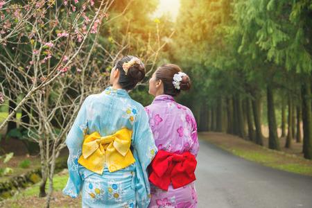 사쿠라 공원, 일본에서 벚꽃을보고 서 관광 여행 여성 여행. 아시아 여자 핑크 꽃을보고 하 고 일본의 전통적인 옷을 입고 기모노. 후면보기 및 복사 공