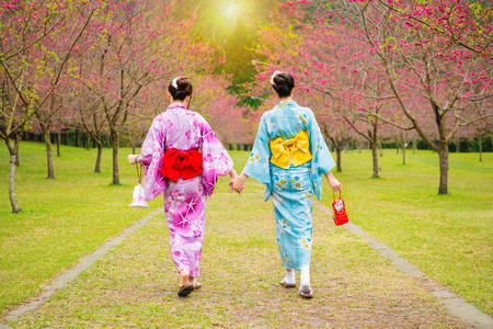 wearing pretty kimono japan girls walking together hand in hand on the cherry tree garden enjoying view the blooming pink flowers in the summer afternoon time. Stock Photo