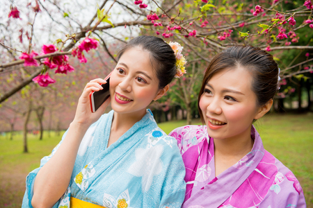closeup of woman in cherry tree garden using the mobile cell phone to speaking sharing cherry flowers blooming with friends when traveling in overseas and wearing japan local kimono. Stock Photo