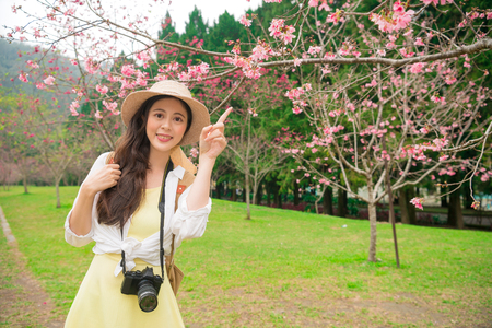 when: beautiful female blogger visiting famous cherry tree plant park enjoy viewing cherry blossoms and pointing sakura pink flowers to sharing scenery for family and friends when in japan travel.