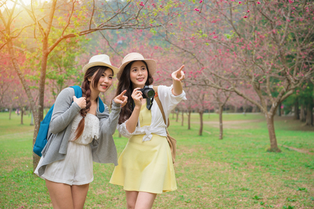 young female backpackers pointing beautiful sakura flowers and holding camera taking picture on famous cherry blooming tree park in japan travel vacation.