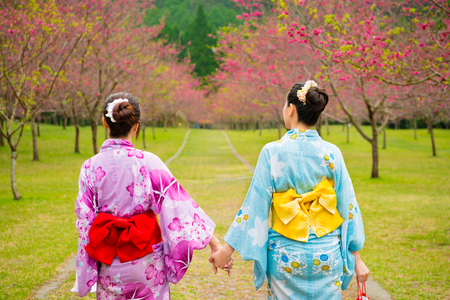 asian chinese women travel to Japan wearing traditional kimono clothing going to the streets of cherry tree plant blossoming and walking hand in hand together in the asia trip vacation.