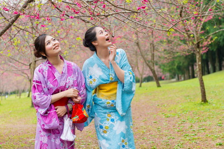 sweet smiling girls looking at cherry blossom flower trees feeling surprised and wearing traditional kimono clothing in japan travel vacation holidays. Фото со стока