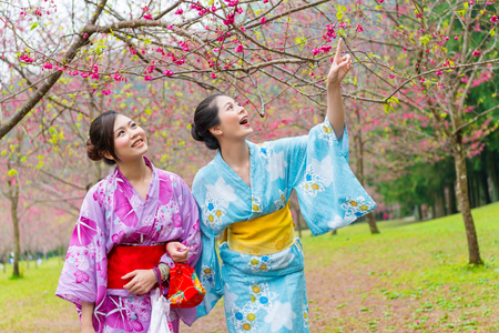 beautiful cheerful women travelers wearing traditional kimono walking in cherry blossom park and pointing sakura sharing with friend during sightseeing holidays. Фото со стока