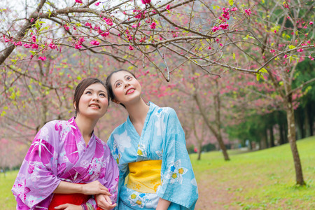 beauty elegant female travelers looking at sakura flower of garden and wearing traditional dress kimono enjoying cherry blossoms season in japan.