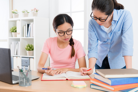 beautiful young lady individual home teacher explaining school textbook content to teach her student studying and preparing exam. Stockfoto