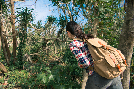 back view photo of young professional female jungle researcher carrying backpack to view forest natural tree and hiking relaxing in summer.