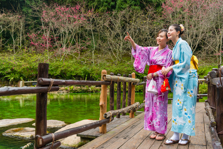attractive pretty female travelers wearing kimono clothing standing in wooden walkway and pointing cherry blooming sharing beautiful view for each other during japan travel.