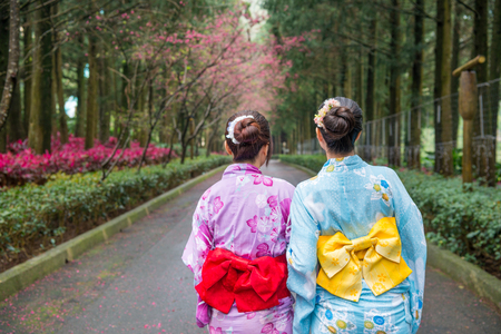 Two Asian female tourists taking a short walk under the cherry blossom tree. They stand side by side and hold their hands together. Фото со стока