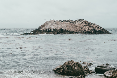 a beautiful and amazing landscape with tons of sea birds gathering around on a small island.