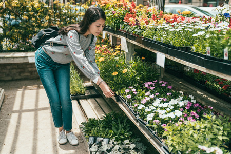 a young pretty woman bending and choosing flowers in the florist of a small and beautiful town. Stock Photo