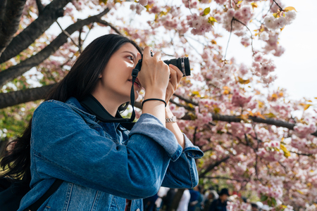 young girl standing under sakura tree in the park in spring. beautiful woman professional photographer love hobby taking photo of the pink cherry blossom. elegant lady holding dslr camera. Imagens - 112052322
