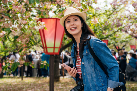 woman traveler standing near the japanese red lantern and surrounding by the pink beautiful sakura flower. young lady traveler holding mobile phone visiting japan mint for cherry blossom tree.