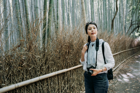 female photographer preparing to take some photos in a forest. young girl backpacker holding camera sightseeing around standing on passway with bamboo trees. woman in sunglasses hobby photography