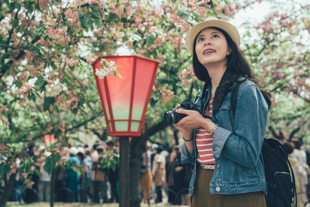 Portrait of young asian woman holding camera and enjoy blossom cherry tree under blue sky in japan. Reklamní fotografie - 118780389