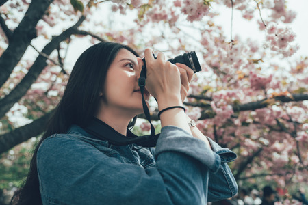 asian young girl backpacker shooting cherry blossom in Osaka.