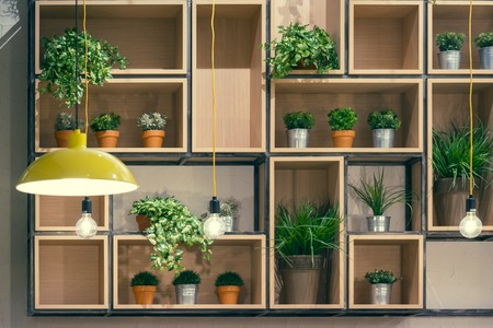 planned: Cafe Interior Decorative Shelves Portfolio Profile Design Photo