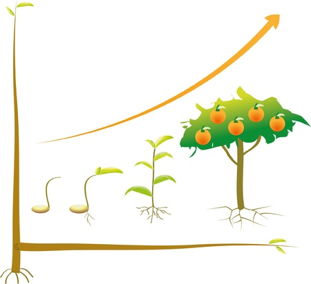 Seed business chart from beginning to successful. Illustration