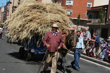 san isidro:  Harvest wheat of San Isidro,Talavera Editorial