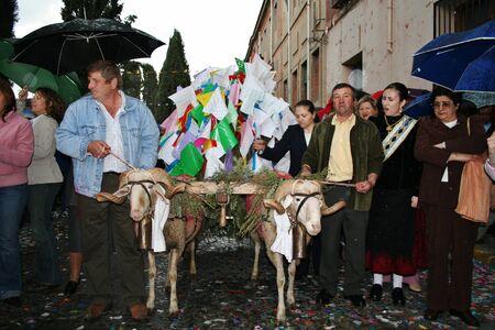fiesta popular: Traditional Mondas, cart, rams, Festivals Editorial