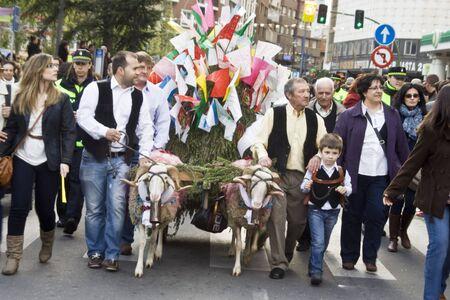 talavera de la reina: Courtship, Mondas the festival of of Talavera de la Reina Editorial