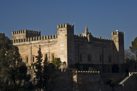 Castle Malpica de Tajo, Toledo, Spain Stock Photo - 13456095