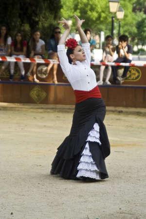 talavera: II Dance Festival city of Talavera, Dance Equestrian, 30052012 Editorial