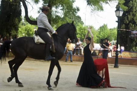 Festival de danse ville de Talavera, de danse équestre, 30/05/2012 Banque d'images - 13887336