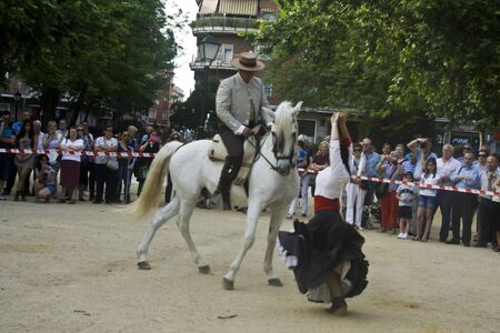 Dance Festival city of Talavera, Dance Equestrian, 30052012 Editorial