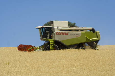 Harvesting machine working in a field of wheat