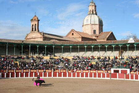 Bull Ring de Tavera de la Reina, Toledo Stock Photo - 18899926