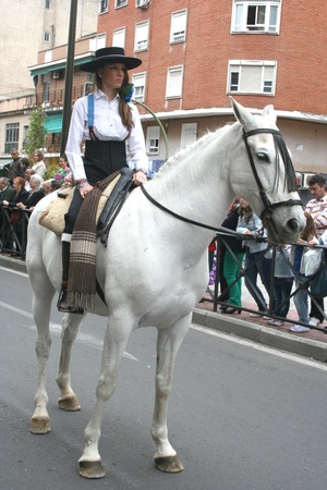 san isidro: Horses and riders in the parade of San Isidro de Talavera, Toledo, May 15, 2013 Editorial