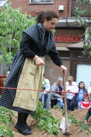 isidro: woman working in the field, Festivals of San Isidro, Talavera May 15, 2013