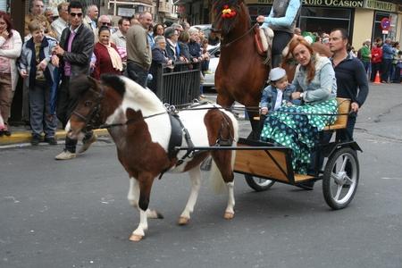 isidro: Horses and riders in the parade of San Isidro de Talavera, Toledo, May 15, 2013 Editorial